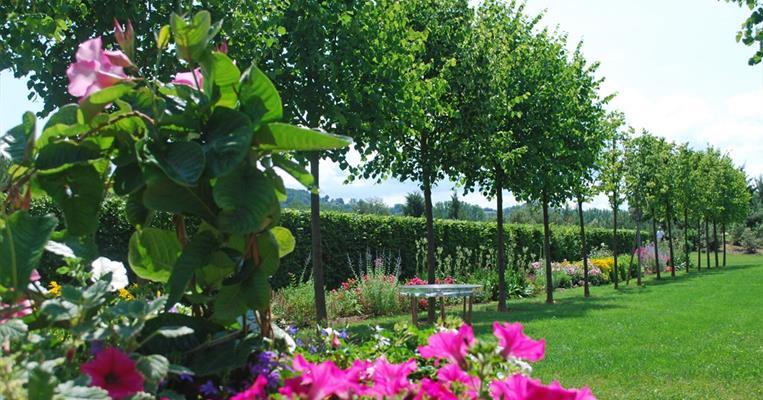 the gardens of colette and her maze varetz tourism in corr ze. Black Bedroom Furniture Sets. Home Design Ideas