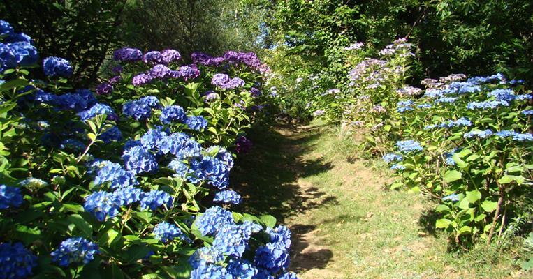 Jardin Du Bout Du Monde Lostanges Tourisme Correze